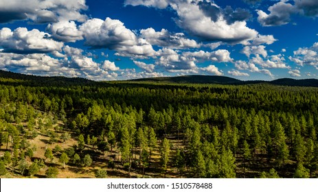 Aerial view above the Pine Trail Head near Pine and Arches State Park, Arizona on a beautiful cloudy day with green pine trees, blue sky, hills, ridges along the Mogollon Rim