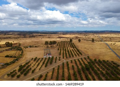 Aerial view of a agricultural field, Alentejo Portugal