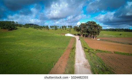 Aerial view of an agricultural field with a road to the center. Agricultural farm.