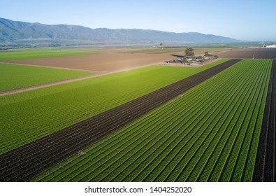 Aerial view of agricultural fields in California, United States. Salinas valley