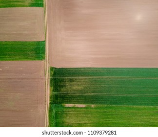 Aerial view of agricultural fields at spring