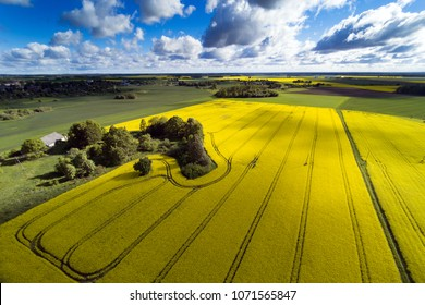 Aerial view of agricultural fields in summer evening, Latvia.
