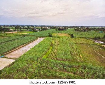 Aerial view of agricultural fields in Thailand