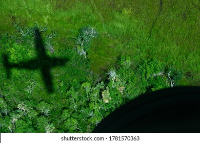 Aerial view of airplane shadow on ground, Belize