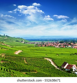 Aerial view to Alsace fruit valley at Kaysersberg and Colmar area with Kientzheim village in the background