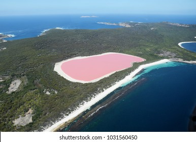 Aerial view of the amazing Lake Hillier (Pink Lake), near Esperance. It is a saline lake that represents an amazing natural landmark in Western Australia