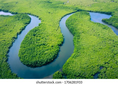 Aerial view of Amazon rainforest in Brazil, South America. Green forest. Bird's-eye view.  - Shutterstock ID 1706281933