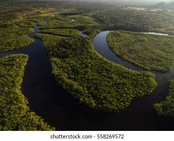 Aerial View of Amazon Rainforest, Brazil