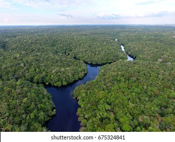 Aerial view of Amazonia Forest, near Novo Airão city, Amazonas, Brazil