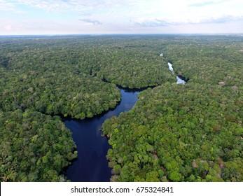 Aerial view of Amazonia Forest, near Novo Airão city, Amazonas, Brazil