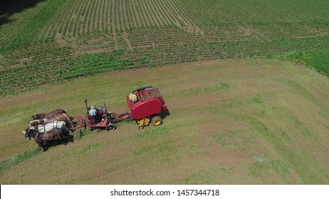 Aerial View of an Amish Farmer Harvesting His Crop with 4 Horses and Modern Equipment