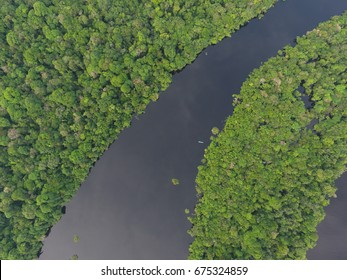 Aerial view of Anavilhanas National Park, in Negro River, flooded amazonia forest, Amazonas, Brazil
