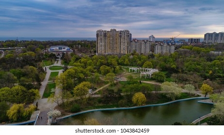 Aerial View of  Arboretum Peremohy known as Victory Park in Odeesa Ukraine