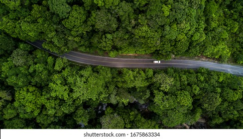 Aerial view asphalt road and green forest, Forest road going through forest with car adventure view from above, Ecosystem and ecology healthy environment concepts and background.