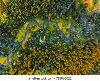 Aerial view of the autumn forest and small river