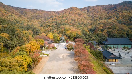 Aerial view autumn of Statue of Buddha in Temple, Seoul Korea