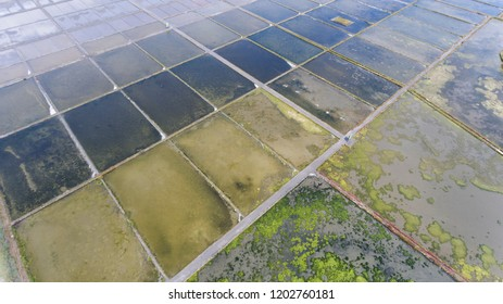 Aerial view from the Aveiro Salines, one of the icons of Aveiro to produce salt.
