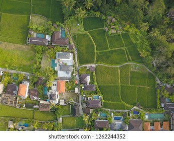 Aerial view of a Bali village