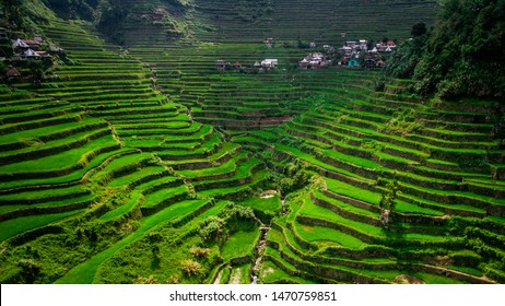 Aerial view of Batad Rice Terraces in Ifugao Province, Luzon Island, Philippines.