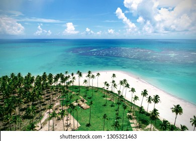 Aerial view of Carneiros's Beach, Pernambuco, Brazil: Vacation in the paradisiac beach with blue sky and crystal water. Fantastic beach view. Great landscape. Travel scene. Vacation scene. Resort scen