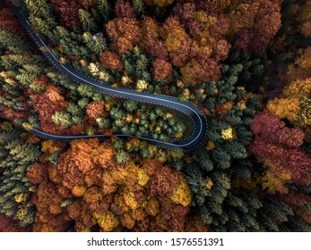 Aerial view from beautiful autumn forest foliage. Magical landscape with empty rural curved road, trees with green, red and orange leaves in Transylvania,Romania.
