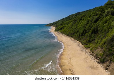 Aerial view to beautiful beach and forest
