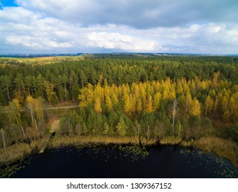 Aerial view of beautiful covered with forest landscape of Mazury region during autumn season, Ogonki, Poland