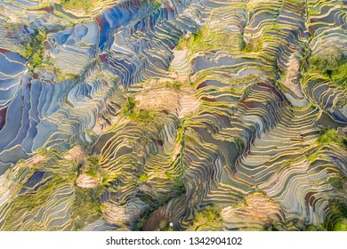 aerial view of beautiful hani terraced fields, yunnan province, China