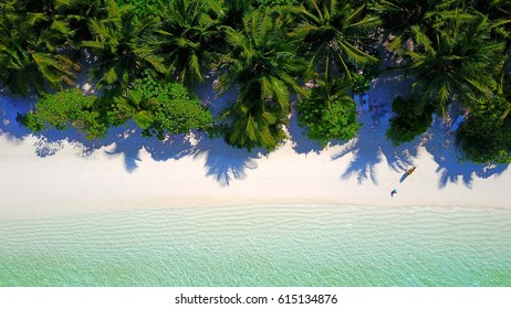 Aerial view of beautiful white sand becah and palm trees