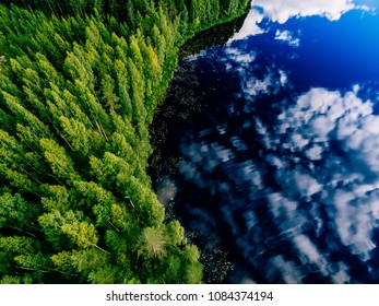 Aerial view of blue lake and green forests on a sunny summer day in Finland. Drone photography