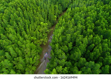 Aerial view of boat driving through the forest on country river. Trad, Thailand