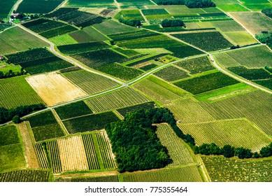 Aerial view of Bordeaux vineyard, France, Europe