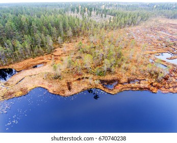Aerial view of bright blue lake in a swamp in Finnish Lapland