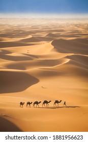 Aerial View Of Camel Caravan In The Sahara Desert