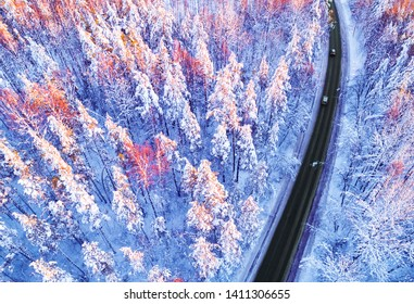 Aerial view of a car on winter road in the forest. Winter landscape countryside. Aerial photography of snowy forest with a car on road. Captured from above with a drone. Aerial photo. Car in motion
