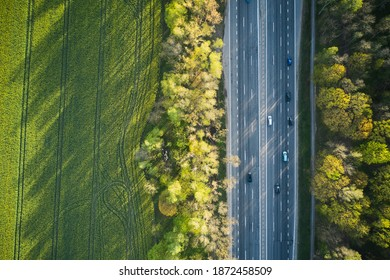 Aerial view of cars driving through the green forest on highway. Top view.