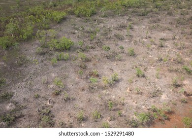 Aerial view of Cathedral Termite Mounds in Litchfield National Park, Northern Territory, Australia