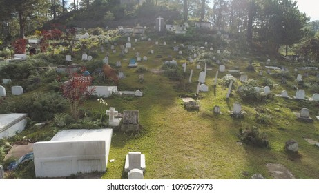 Aerial view of catholic cemetery with white tombstones, graves and crosses in the mountain province of Sagada. Cow grazing in the cemetery. Philippines, Luzon.