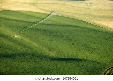 An aerial view of a center pivot sprinkler system irrigating a potato field