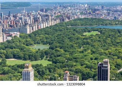 Aerial view Central park of New York   cityscape