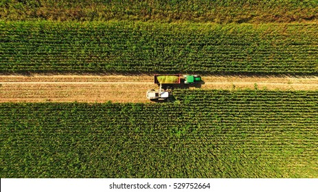 Italian Food Images, Stock Photos & Vectors | Shutterstock