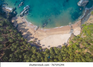 Aerial view of coastline of Indian ocean with tropical forest, water and fishing boats, Morjim beach, Goa. Top photo from flying drone for your advertising text message or promotional content.