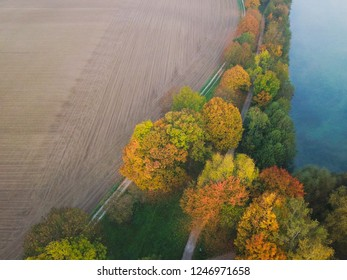 Aerial view of colourful trees between blue lake and plowed fields