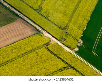aerial view of colza fields at Le Perchay in the department of Val d'Oise in France