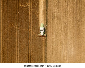 Aerial view of combine harvester agricultural machinery harvesting wheat crops in cultivated field, top view