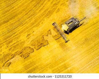 Aerial view of combine harvester. Harvest of wheat field. Industrial background on agricultural theme. Biofuel and food production from above. Agriculture and environment in European Union.