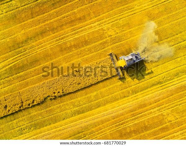 Luftbild von Mähdrescher. Ernte von Rapsfeld. Industrieller Hintergrund zum Thema Landwirtschaft. Biokraftstoffproduktion von oben. Landwirtschaft und Umwelt in der Europäischen Union.