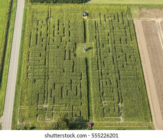 Aerial view of corn labyrinth in the countryside of The Netherlands.