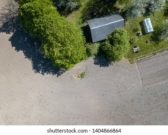 aerial view of countryside fields and forests in green summer day, sunny landscape. drone image