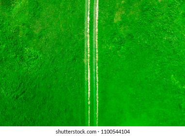 aerial view of countryside road in the green summer meadow